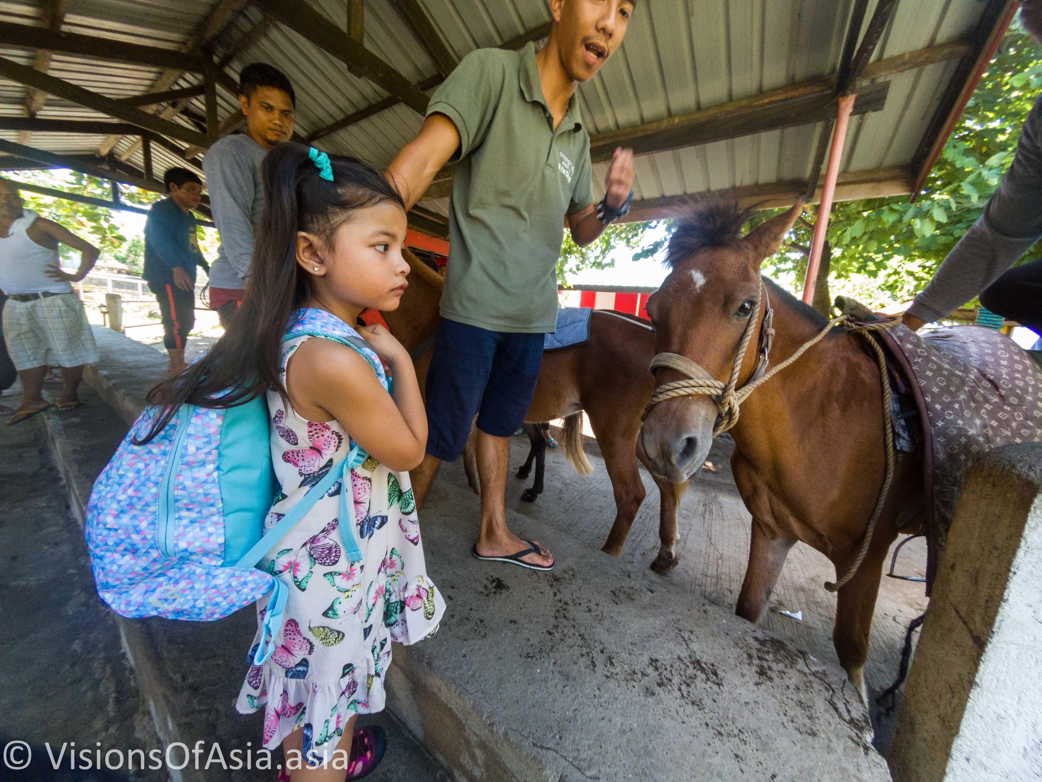 Maria-Sophia and horse