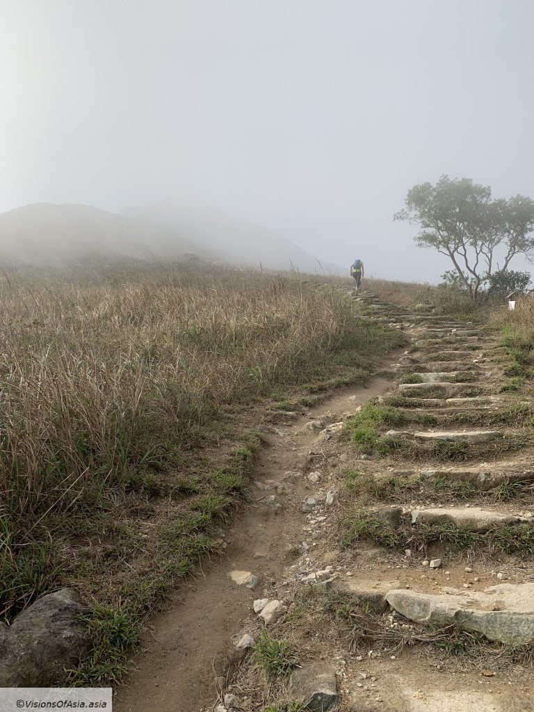 The endless stairs climbing in the fog