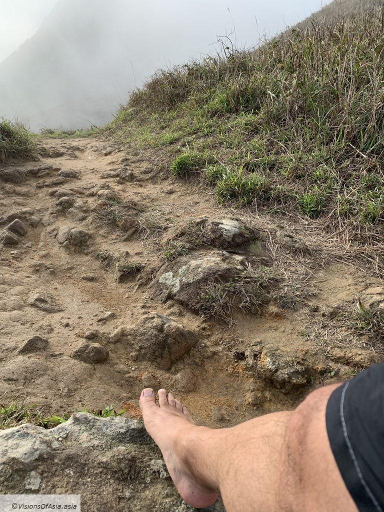 Rough trails